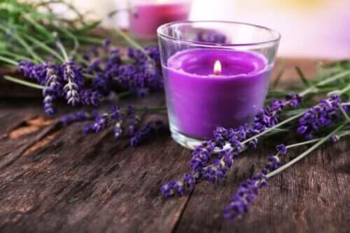 Jak wykonać dekoracyjny świecznik z lawendy?