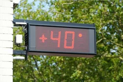 Jak ekstremalne temperatury wpływają na organizm ludzki?