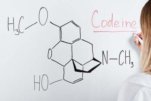 Kodeina: poznaj jej działanie i sposoby użycia