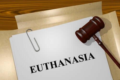 Eutanazja i jej rodzaje, które powinieneś znać