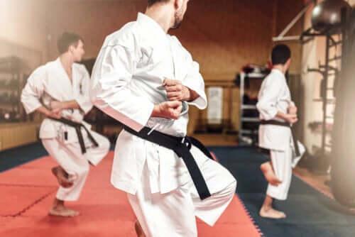 Różnice pomiędzy karate i taekwondo