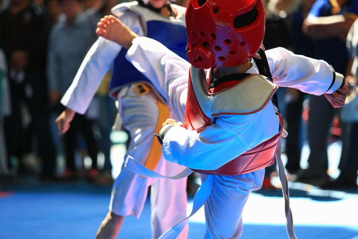 W taekwondo stosuje się ochraniacze.