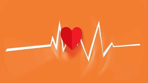 Działanie serca