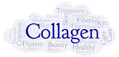 Poznaj źródła kolagenu i jego znaczenie dla organizmu