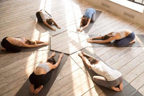 Kobiety w trakcie jogi