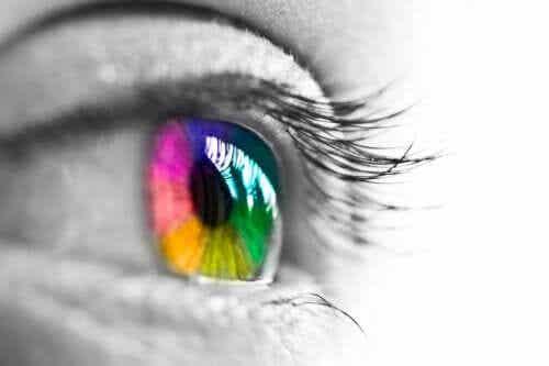 Jak nasze oczy postrzegają kolory?
