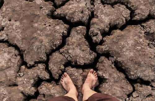 Zmiana klimatu najbardziej szkodzi wrażliwym populacjom