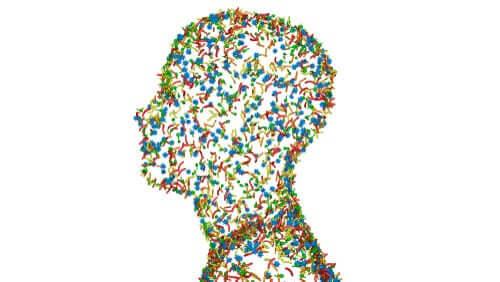 Istoty ludzkie to superorganizmy - co za tym przemawia?